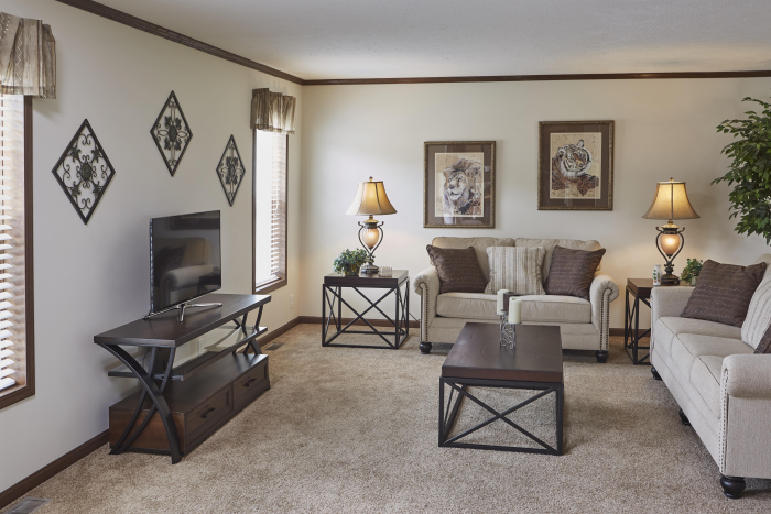 Living room with windows and beige carpet in Montclair model